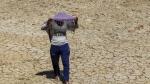 बिहार में गर्मी से मचा हाहाकार, 'लू' की वजह से एक दिन में 30 लोग मौत के शिकार