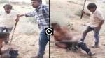 VIDEO : रात को महिला के साथ पकडे़ गए युवक को लोगों ने नंगा करके लाठी-डंडों से जमकर पीटा