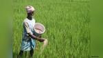 यूपी के किसानों को अभी तक नहीं मिली पीएम किसान योजना की तीसरी किस्त