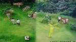 PM मोदी के कार्यक्रम में PSI की खुदकुशी मामले में उसके साथी को DGP ने सस्पेंड किया, दी थी अपनी पिस्तौल