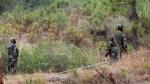 सेना बोली, घुसपैठ के लिए POK के लोगों को चारे की तरह इस्तेमाल कर रहा है पाक