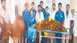 दर्द से कराहती थी गाय, जब डॉक्टरों ने की सर्जरी तो निकला 52 किलो प्लास्टिक