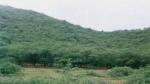 Jaipur : गर्भवती बीवी ने अवैध संबंधों के लिए टोका तो पति ने उसका यह हाल कर जंगल में फेंका