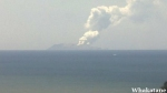 न्यूजीलैंड में अचानक फटा ज्वालामुखी, 100 पर्यटकों के लापता होने का डर