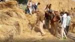 संभल: 7 साल के मासूम की सिर और हाथ कटी लाश हुई बरामद, 6 दिसंबर से था लापता