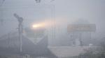 कोहरे का कोहराम जारी,  विजिबिलिटी 50 मीटर से कम, 22 ट्रेनें लेट, दिल्ली में पारा पहुंचा 8 डिग्री