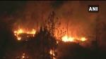 उत्तराखंड के जंगलों में लगी भीषण आग, तेज हवा के कारण नियंत्रित करना मुश्किल, कई हेक्टेयर जंगल साफ