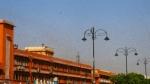 पाकिस्तान से आया टिड्डियों का दल जयपुर शहर में पहुंचा, 12वीं मंजिल तक पहुंची टिड्डियां, देखें वीडियो