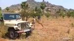 वन विभाग के कर्मचारियों पर तेंदुए ने बोला हमला, रोंगटे खड़े कर देगा वीडियो