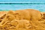 Elephant Death: सुदर्शन पटनायक ने सैंड आर्ट के जरिए हथिनी को दी श्रद्धांजलि, बोले- मर चुकी है मानवता