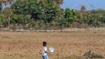 पाकिस्तान की टिड्डियों का राजस्थान के बाड़मेर में हमला, बीज बोते ही किसान चिंतित