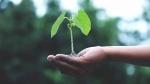World Nature Conservation Day: पहले से ज्यादा जरूरी है प्रकृति का संरक्षण, जानिए क्यों खास है ये