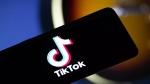 सावधान: क्या आपको भी मिला TikTok प्रो वाला ये मैसेज, भूलकर भी ना करें डाउनलोड, हो सकता है बड़ा नुकसान