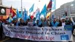 'चीन में नरसंहार की जांच करें'- उइगर और दूसरे मुसलमानों ने UN से लगाई गुहार