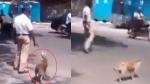 कुत्ते को सड़क पार कराने के लिए हवलदार ने रोक दिया पूरा ट्रैफिक, देखें दिल छू लेने वाला Video