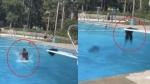 लड़की ने स्विमिंग पूल में लगाई ऐसी छलांग कि सिर से अलग हो गए 'बाल', Video देख लोगों की छूटी हंसी