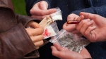 बेंगलुरू पुलिस ने MDMA और जुरैसिस ड्रग्स कारोबार में लिप्त 5 लोगों को गिरफ्तार किया