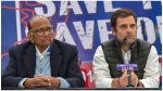 शरद पवार ने कहा, 'राहुल गांधी में 'निरंतरता' की कमी लगती है', ओबामा के बयान पर कही ये बात