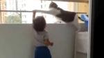 VIDEO: शरारती बच्चे की आइडियल पेरेंट्स बनी पालतू बिल्ली, इंटरनेट पर लोग बता रहे हैं 'हीरो'