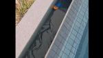 VIDEO: स्विमिंग पूल में तैर रहा था दुनिया का सबसे जहरीला सांप, स्नेक कैचर्स भी देख हुए हैरान