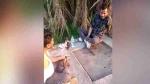 मुजफ्फरनगर: दारू पार्टी का वीडियो बना रहा था शख्स, कैमरे में कैद हो गई खुद की लाइव मौत