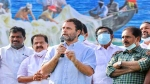 क्या राहुल गांधी के बयान पर डैमेज कंट्रोल कर पाएगी कांग्रेस ?