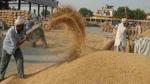 उत्तर प्रदेश में एक अप्रैल से शुरू होगी गेहूं खरीद, योगी सरकार ने तय किया न्यूनतम मूल्य