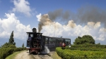 118 साल पुराना है कालका-शिमला रेल मार्ग, विश्व धरोहर दिवस पर जानें भारत की 5 ऐसी ऐतिहासिक जगहों के बारे में