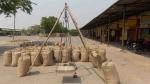 योगी सरकार ने की गेहूं की बम्पर खरीद, 99 हजार 935 किसानों के खातों में किया भुगतान