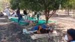 MP में खुली स्वास्थ्य व्यवस्था की पोल, खेत में पेड़ के नीचे हो रहा मरीजों का इलाज