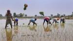 किसानों की मदद के लिए गांव में लगाए जाएंगे किसान,मित्र, जानिए आवेदन की प्रक्रिया