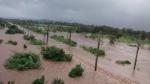 महाराष्ट्र में आज भी होगी भारी बारिश, 129 लोगों की हुई मौत, मुंबई में दूध की सप्लाई भी ठप