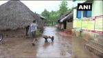 ओडिशा के माउंटेन मैन: 30 साल में जंगल के रास्ते शख्स ने खुद बना दी सड़क, तब सरकार ने खड़े कर दिए थे हाथ