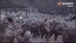 Watch: चीन ने जारी किया गलवान घाटी का अनदेखा खतरनाक वीडियो, देखिए कैसे लड़ रहे हैं दोनों देश के जवान