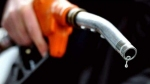 Fuel Rates: घटे या बढ़े  पेट्रोल-डीजल  के रेट,जानने के लिए यहां करें क्लिक