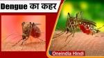 पंजाब में डेंगू से आए दिन हो रही है मौत, स्वास्थ्य व्यवस्थाओं की खुली पोल, प्रशासन की बढ़ी टेंशन