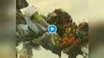 VIDEO: सरकार की रोक के बावजूद यमुना में मूर्तियां बहा रहे दिल्लीवासी, कचरे से नदी में प्रदूषण का स्तर बढ़ा