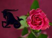 2016 में मकर राशि वालों का Love Horoscope