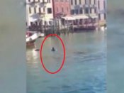 खूबसूरत वेनिस का बदसूरत चेहरा, डूबकर मर गया शख्स और लोग बनाते रहे VIDEO