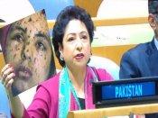 UN महासभा में फर्जी तस्वीर दिखाने के कारण पाकिस्तान पर हो सकती है कार्रवाई