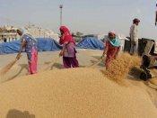 सरहदों का अड़ंगा: भारत की गेंहू की बोरी 4 हजार किमी का सफर तय कर 10 दिन में पहुंचती है काबुल
