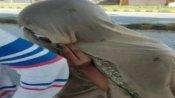 लॉकडाउन में औरतों के कपड़े पहनकर बाहर निकल रहें हैं मर्द, एक पकड़ा गया