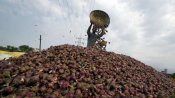नाराज बांग्लादेश को भारत सरकार ने 25 हजार टन प्याज भेजकर मनाया