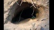 200 मीटर लंबी सुरंग के रास्ते नगरोटा में दाखिल हुए थे जैश आतंकी, BSF को मिले अहम सुबूत