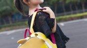 अमेरिका के एक स्कूल ने 5 साल की लड़की के ड्रेस पर जताया ऐतराज, कंधा दिखने पर बदलवा दिए कपड़े