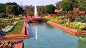 आम लोगों के लिए 13 फरवरी से खुलेगा मशहूर 'मुगल गार्डन', ऐसे कराएं Online Booking