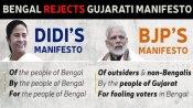 बीजेपी के घोषणापत्र को ममता ने बताया-गैर बंगालियों का गुजराती मेनिफेस्टो
