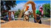 नाराज किसानों को मनाने की कोशिश में केंद्र सरकार, जल्द जारी होगी पीएम सम्मान निधि योजना की 8वीं किस्त