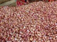 महाराष्ट्र: किसान ने 2657 किलो प्याज बेचने से हुई 6 रुपए की कमाई मुख्यमंत्री को भेजी