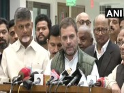 विपक्षी दलों की बैठक के बाद बोले राहुल गांधी, हमारा लक्ष्य बीजेपी को हराना